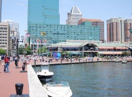 Oddball Escapes Baltimore Harbor inclusion sightseeing