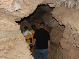 Oddball Escapes baseball road trip sports tour Mammoth Cave included sightseeing