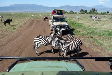 tour guide escorted tour multi-destination Globus Africa