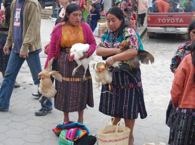 South American Indigenous Market