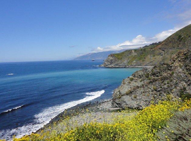 California's Pacific Coast Landscape