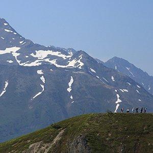 Alaska-excursion-Denali-wilderness-walking-tour-Globus