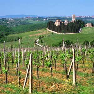 Tuesday, October 163 towns in Tuscany